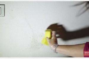Rimedio naturale,Come togliere la muffa dalle pareti.