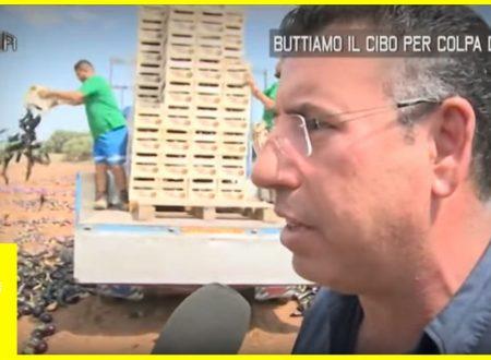 Vergognoso: Buttiamo il cibo per colpa dell'UE – Fate Girare Condividete-