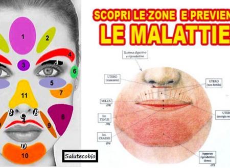 Il viso riflette la salute del tuo corpo… Ecco la mappa del tuo benessere o malessere!