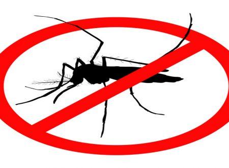 Come preparare in casa un repellente spray anti zanzare – Funziona, risparmi un sacco di soldi e non ti metti porcherie chimiche indosso!!