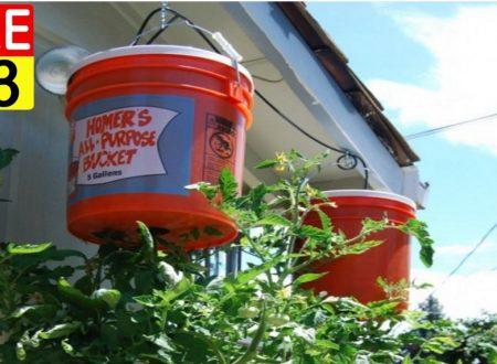 Coltivare I Pomodori In Casa A Testa In Giù…