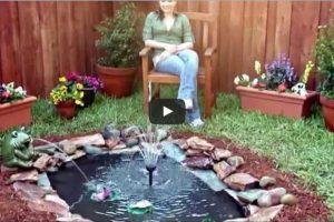 creare un laghetto in giardino