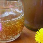 Zenzero fermentato per prevenire cancro, artrite, colesterolo e glicemia.