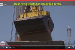 Grano e riso, l'invasione straniera a tavola – Nemo – Nessuno Escluso 27/04/2017