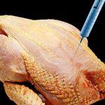 Ecco come fanno diventare più belli e grossi i polli che compriamo