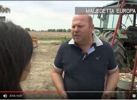 La Gabbia – Maledetta Europa – La rabbia degli Agricoltori italiani .