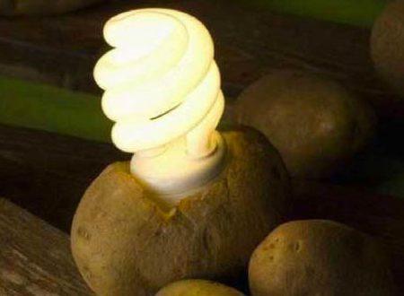Con una patata puoi illuminare un'abitazione per 40 giorni