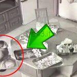 Telecamere di sorveglianza: la cameriera urinava nelle padelle del cibo.