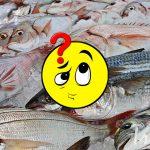 Ecco come riconoscere il Pesce Fresco.