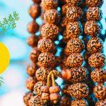 Conoscevi i semi di Rudraksha? dalle proprietà mistiche, astrologiche e medicinali.